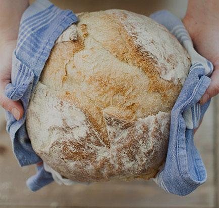 brood-kamstra-hover